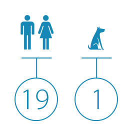 icon-company-size