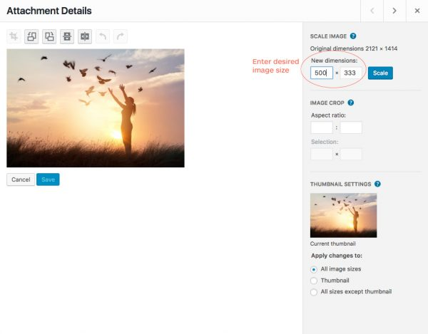 Editing image in WordPress